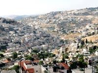 שכונת סילואן במזרח ירושלים  / צילום: איל יצהר